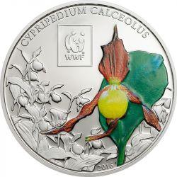 100 Shillings Obuwik Pospolity WWF