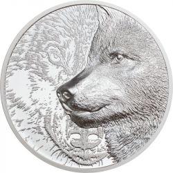 500 Togrog Mystic Wolf