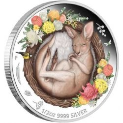 50¢ Kangur - Dreaming Down Under 1/2 oz Ag 999