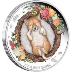 50¢ Dingo - Dreaming Down Under 1/2 oz Ag 999 2021 Australia