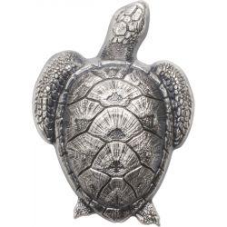 10$ Żółw Morski