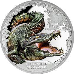 1$ Krokodyl Słodkowodny - Niezwykłe Gady