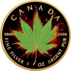 5$ Burning Marihuana, Indica, Maple Leaf