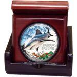 1$ Żarłacz Tępogłowy, Rekin - Niebezpieczne Zwierzęta