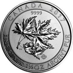 8$ Multi Maple Leaf