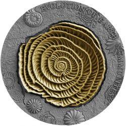 2$ Nummulites - Evolution of Earth