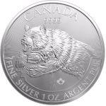 5$ Grizzly - Drapieżniki