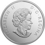 20$ Rozgwiazda - Under the Sea