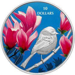 10$ Sikorka Jasnoskrzydła - Ptaki wśród Barw Natury