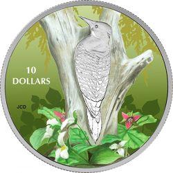 10$ Dzięcioł - Ptaki wśród Barw Natury