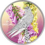 10$ Jaskółczak Modry - Ptaki wśród Barw Natury