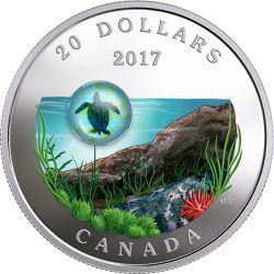 20$ Żółw - Under the Sea, Murrine Glass