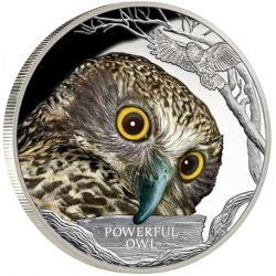 1$ Powerful Owl - Endangered and Extinct