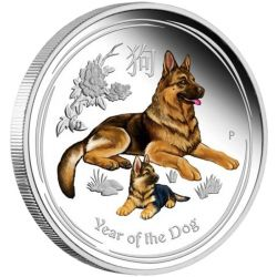 1$ Year of the Dog