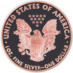 1$ Admire Meteorite USA Liberty - Atlas Meteorytów