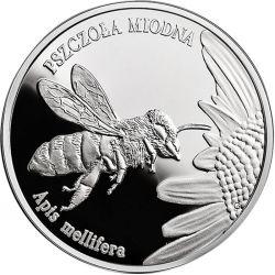 20 zł Pszczoła Miodna - Zwierzęta Świata
