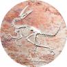 2000 Togrog Velociraptor - Evolution of Life