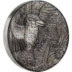 2$ Kookaburra