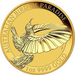 100$ Ozdobnik Mały - Rajskie Ptaki