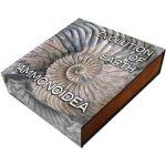 2$ Ammonoidea - Ewolucja na Ziemi