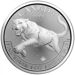 5$ Puma - Drapieżniki