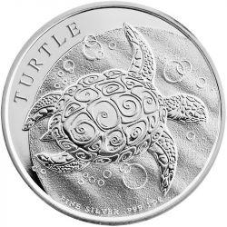2$ Taku Turtle