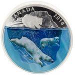 30$ Niedźwiedzie Polarne - Głębia Natury