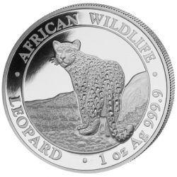 100 Shillings Leopard - African Wildlife