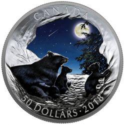 50$ Księżycowy Spokój - Pokaz Świateł Natury