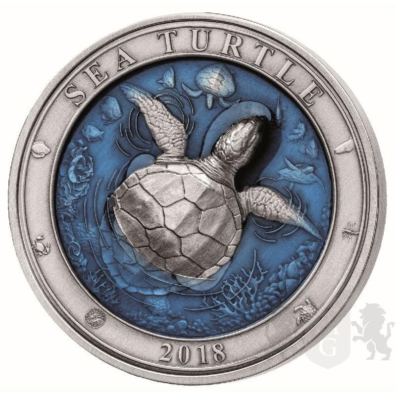 5 Zolw Podwodny Swiat