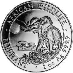 100 Shillings Słoń - African Wildlife