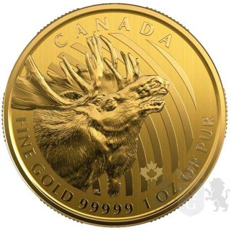 200$ Złoty Łoś - Zew Natury