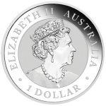 1$ Orzeł Australijski