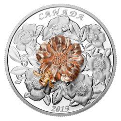 50$ Trzmiel i Kwiat 5 oz 2019