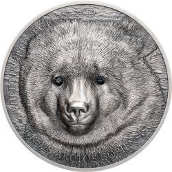 500 Togrog Gobi Bear