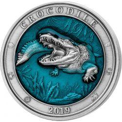 5$ Krokodyl - Podwodny Świat