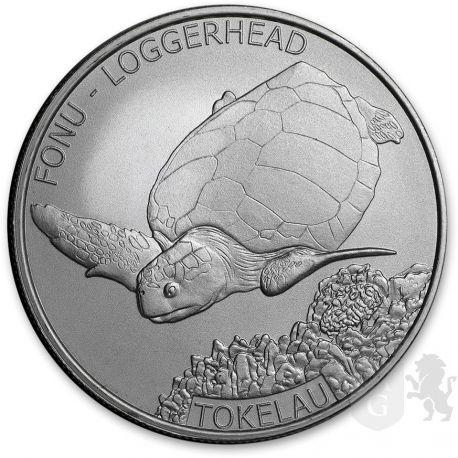 5$ Żółw Morski