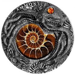5$ Ammonite 2019