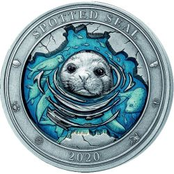 5$ Spotted Seal - Underwater World