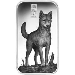 1$ Dingo - Drapieżniki