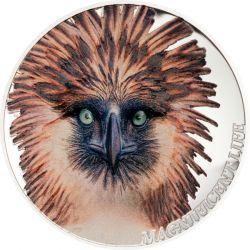5$  Philippine Eagle - Magnificent Life