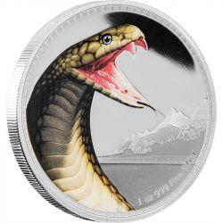 2$ Kobra Królewska - Królowie Kontynentów