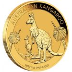 100$ Kangur