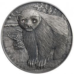 2$ Honey Badger - Brave Animals