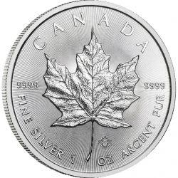 5$ Maple Leaf