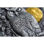5$ Sowa Uszatka - Dzika Przyroda w Świetle Księżyca