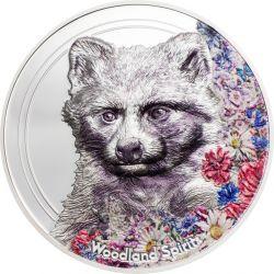 500 Togrog Raccoon Dog -...