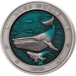 5$ Blue Whale - Underwater...