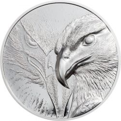 500 Togrog Majestic Eagle