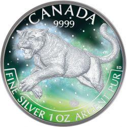 5$ Frozen Puma Aurora Rhodium